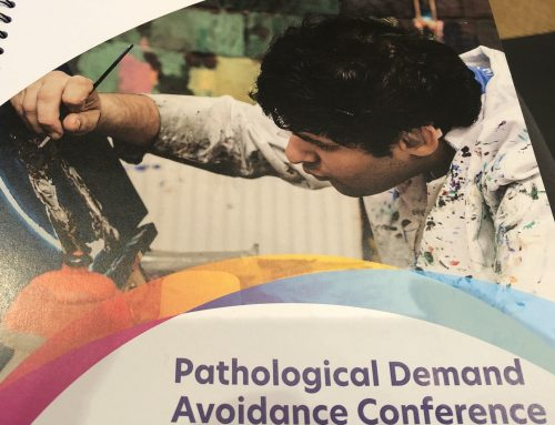 National Autistic Society PDA Conference Summary